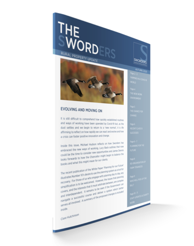 newsletter-theword-autumn-2020